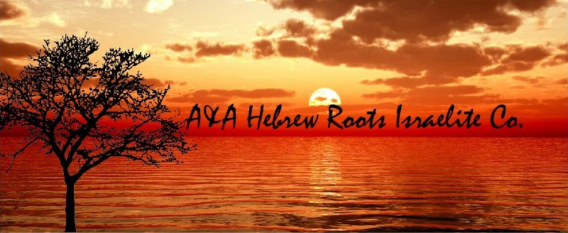 A&A Hebrew Roots Israelite Co  | Teespring